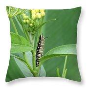 Yellow Black  White Caterpillar Throw Pillow