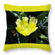 Yellow Bonnet, Cactus Throw Pillow