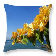 Yellow Bougainvillea Over The Mediterranean On The Island Of Cyprus Throw Pillow
