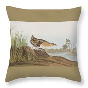 Yellow-breasted Rail Throw Pillow