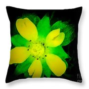 Yellow Buttercup On Black Background Throw Pillow
