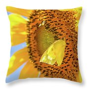 Yellow Butterfly And Sunflower Throw Pillow