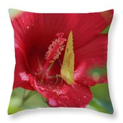 Yellow Butterfly On Red Hibiscus Throw Pillow