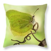 Yellow Butterfly On The Branch Throw Pillow