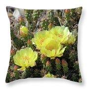 Yellow Cactus Blooms Throw Pillow