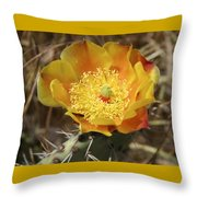 Yellow Cactus Flower On Display Throw Pillow