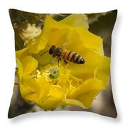 Yellow Cactus Flower With Wasp Throw Pillow