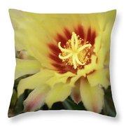Yellow Cactus Plant Flower Throw Pillow