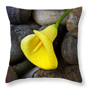 Yellow Calla Lily On Rocks Throw Pillow