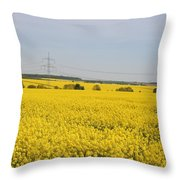 Yellow Canola Field Throw Pillow