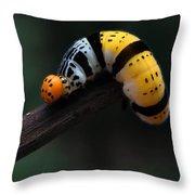 Yellow Caterpillar Throw Pillow