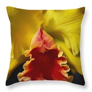 Yellow Cattleya Orchid Throw Pillow by Greg Vaughn - Printscapes