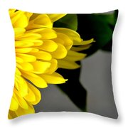 Yellow Chrysanthemum Flower Throw Pillow