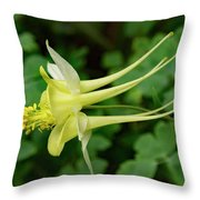 Yellow Columbine Profile Throw Pillow