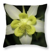 Yellow Columbine Squared 2 Throw Pillow