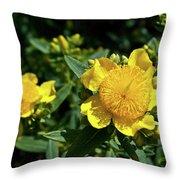 Yellow Crown Flower Throw Pillow