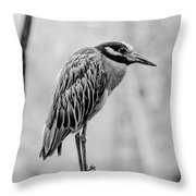 Yellow-crowned Night Heron Black And White Throw Pillow