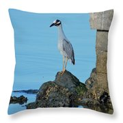 Yellow Crowned Night Heron Rocking It Out Throw Pillow