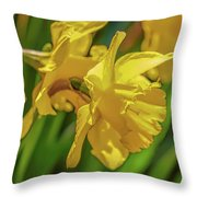 Yellow Daffodil May 2016. Throw Pillow