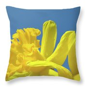 Yellow Daffodils Flowers Art Blue Sky Spring Baslee Troutman Throw Pillow