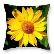 Yellow Daisey Throw Pillow