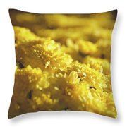 Yellow Daisies Throw Pillow