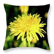 Yellow Dandelion Flower Throw Pillow