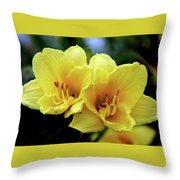 Yellow Daylilly 0204 H_2 Throw Pillow
