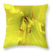 Yellow Daylily Throw Pillow