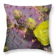 Yellow Desert Bloom Throw Pillow