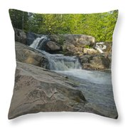 Yellow Dog Falls 4213 Throw Pillow