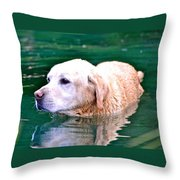 Yellow Dog In Pond Throw Pillow