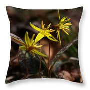 Yellow Dogtooth Violets Throw Pillow