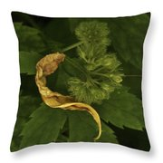 Yellow Drying Leaf With Seeds Throw Pillow