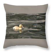 Yellow Duckling Throw Pillow