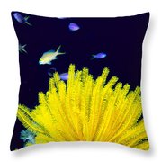 Yellow Feather Star Throw Pillow
