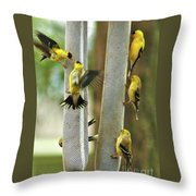 Yellow Finch Feeding Frenzy Throw Pillow