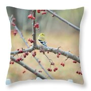 Yellow Finch In Crab Apple Tree Throw Pillow