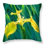 Yellow Flag Wildflower Throw Pillow