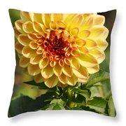 Yellow Flora Throw Pillow