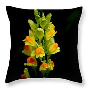 Yellow Floral 7-24-09 Throw Pillow