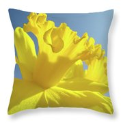 Yellow Flower Floral Daffodils Art Prints Spring Blue Sky Baslee Troutman Throw Pillow