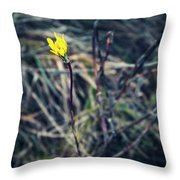Yellow Flower In Dry Autumn Grass Throw Pillow