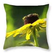 Yellow Flower In Sunlight Throw Pillow