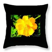 Yellow Flower On Black Background Throw Pillow