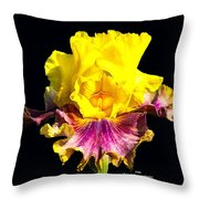 Yellow Flower On Black Throw Pillow