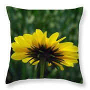 Underside, Petals, Yellow Throw Pillow
