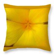 Yellow Flower Photograph Throw Pillow
