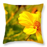 Summers Glory In Bloom By Earl's Photography Throw Pillow