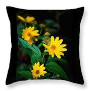 Yellow Flowers Throw Pillow
